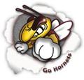 Fighting hornet logo