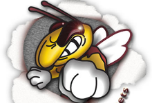 Athletic hornet