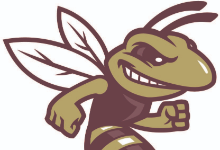 Hornet logo